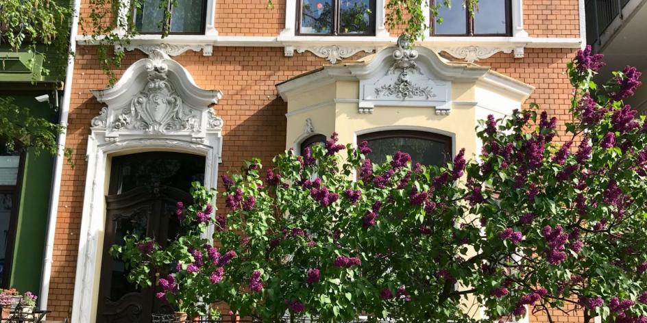 Gästewohnung Neustadt