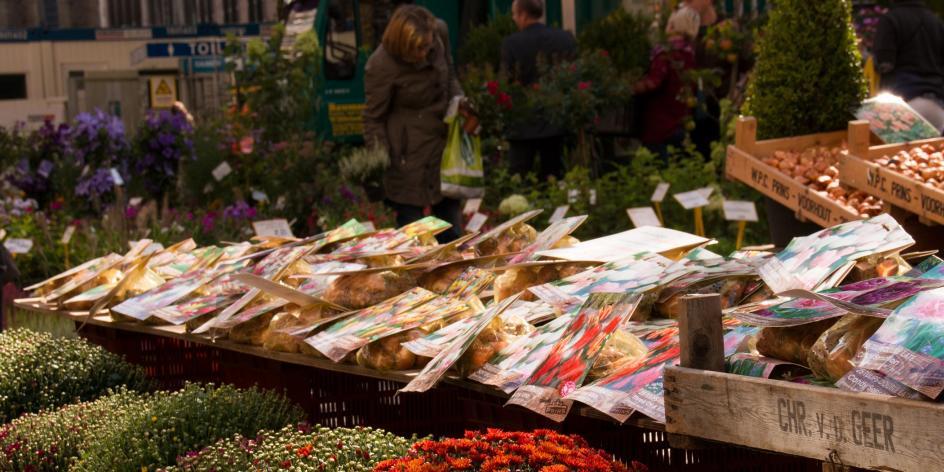 Blumenmarkt Liebfrauenkirchhof