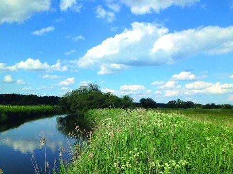 Wiesen und die Wümme im Bremer Blockland vor blauem Himmel mit ein paar Wolken.