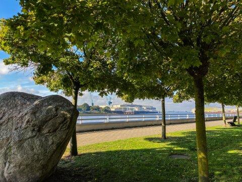 Der Blick geht über die Weser. Davor sind ein paar Bäume gepflanzt und daneben stehen Bänke.