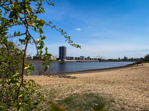Es hängt ein Ast im Bild. Der Blick geht über den Sandstrand. Im Hintergrund ist die Weser und ein hohes Gebäude zu sehen.