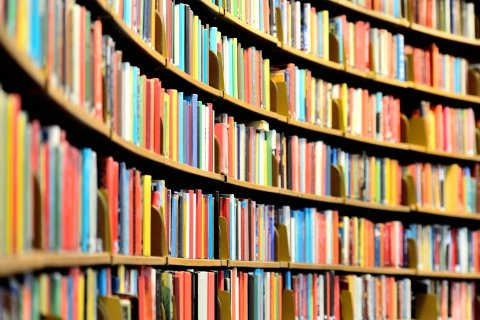 Ein großes Bücherregal voller Bücher.