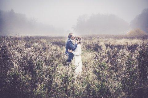 Ein Brautpaar kuesst sich in einem Feld