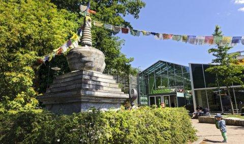 Der Eingang zur botanika mitten im Rhododendron-Park.