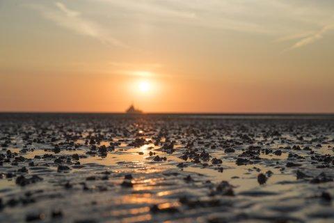 Zu sehen ist ein orange gefärbter Himmel. Die untergehende Sonne scheint auf matschigen Sand. Pfützen in dem Sand spiegeln das orange Licht der Sonne.