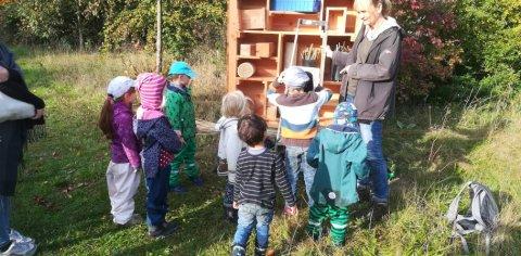 Eine Gruppe von Kindern betrachtet einen Schaukasten in der Natur