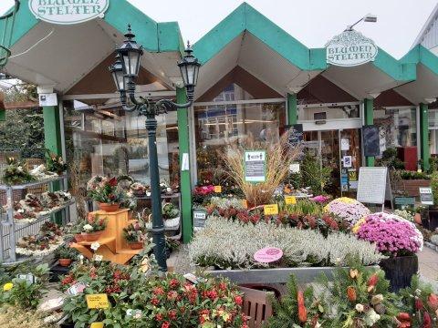 Ein Laden von außen. Davor stehen viele bunten Blumen und eine große Laterne.