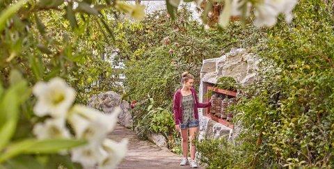 Eine junge Frau schaut sich die Gebetsmühlen in der botanika an. Sie steht in einem dicht bewachsenen Gewächshaus.