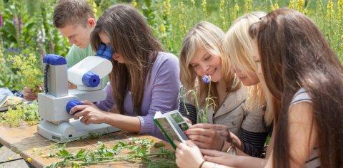 Vier Mädchen und ein Junge erforschen Pflanzen mit einem Mikroskop und einem Buch in der Natur.