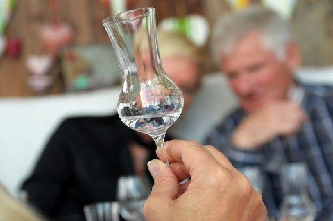 Eine Hand hält ein Schnaps-Glas empor, im Hintergrund zwei Teilnehmende eines Gin-Tastings.