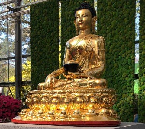 Ein goldener Buddha trohnt auf einem Podest
