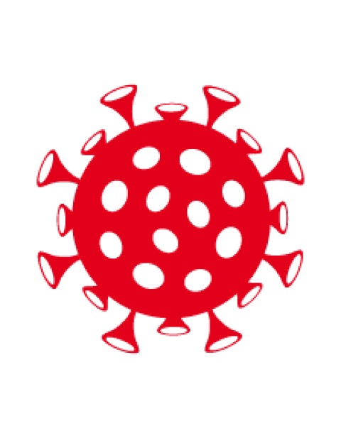 Schematische Darstellung eines Virus