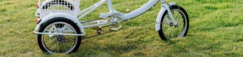 Ein weißes Dreirad auf einer Wiese.
