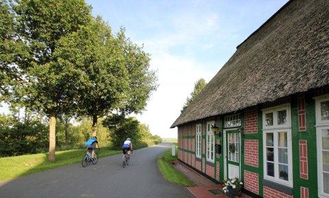 Zwei Rennradfahrer im Blockland.