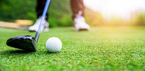 Zu sehen ist ein Golfschläger und ein Ball in Nahaufnahme.