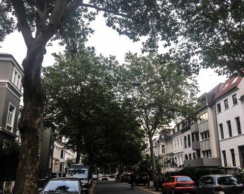 Zu sehen ist die Humboldtstraße. Auf der Straße fährt ein Radfahrer.