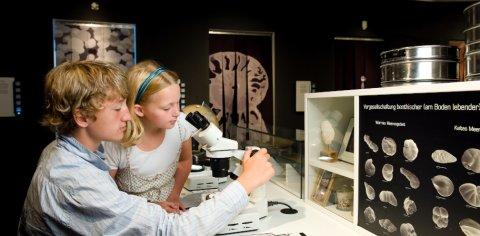 Ein Junge und ein Mädchen schauen durch ein Objektiv in einer Muschelsammlung