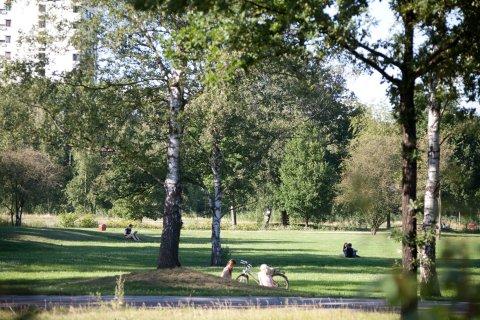 Ein Grünzug in Bremen, Leute genießen die Sonne