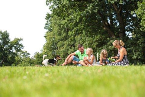Eine Familie macht ein Picknick auf einer Grünfläche im Park