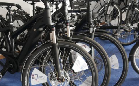 Verschiedene schwarze Radtypen sind nebeneinander aufgestellt