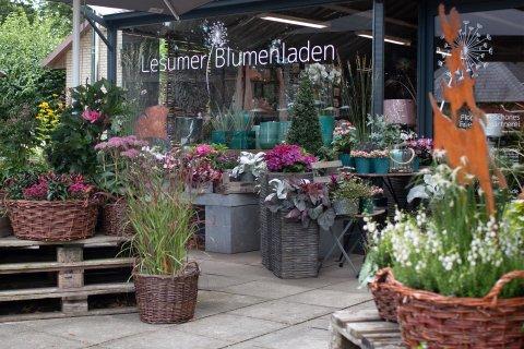 Ein Laden von außen. Davor stehen bunte Blumenkübel und auf der rechten Seite stecken in einer Pflanze die Bremer Stadtmusikanten aus Messing.