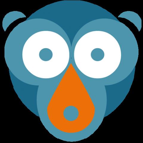 Das Molo News Logo.