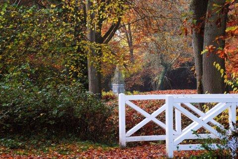 Eine Brücke im herbstlichen Park Höpkens Ruh.