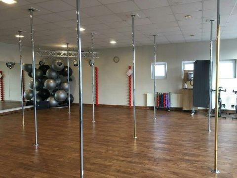 Pole Dance Stangen in einem leeren Spiegelraum.