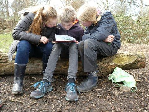Zwei Mädchen und ein Junge sitzen auf einem umgefallenen Baumstamm. Der Junge sitzt in der Mitte, auf seinen Knien liegen Notizen. Die drei schauen sich die Notizen an.