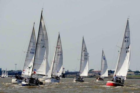 Viele Segelboote