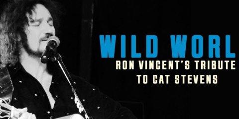"""Ein Mann singt auf der Bühne in ein Mikrofon. Daneben steht """"Wild World - Ron Vincent's Tribute to Cat Stevens""""."""