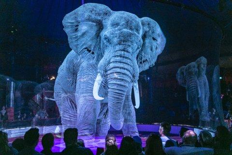 Holographie eines Elefanten in der Circus Manege