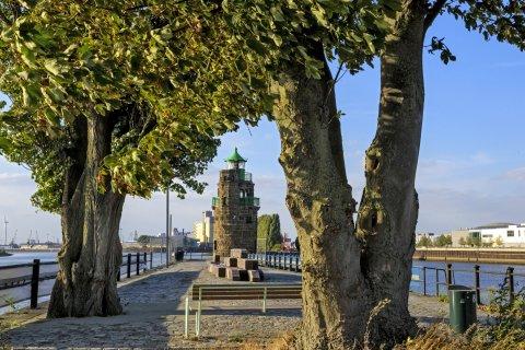 Blick zwischen zwei kräftig gewachsenen Baumstämmen hindurch auf den Molenturm in der Überseestadt
