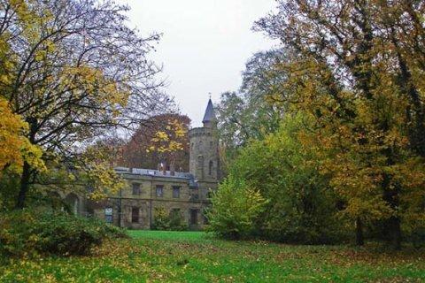 Schloss hinter Bäumen