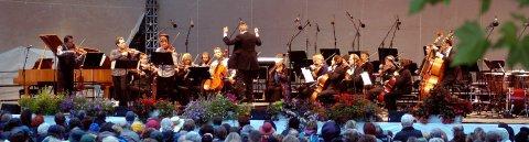 Blick durch Blätter hindurch auf eine Bühne mit einem klassischen Orchester. Davor das Publikum.