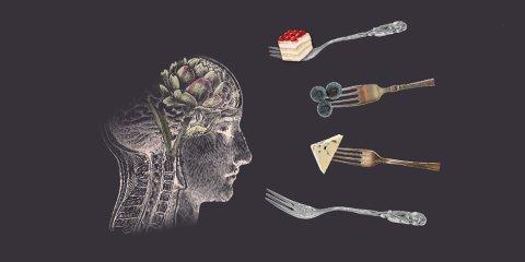 """Illustration zu den Veranstaltungen """"Café im Dunkeln"""" und """"Dinner im Dunkeln"""": Das Bild zeigt eine Zeichnung eines Kopfes in seitlichem Querschnitt. Im Gehirn ist symbolisch eine Artischocke zu sehen. Vor dem Kopf schweben vier Gabeln, teilweise mit unterschiedlichen Lebensmitteln: Eine Gabel transportiert ein Stück Kuchen, eine Heidelbeeren und eine ein Stück Käse."""