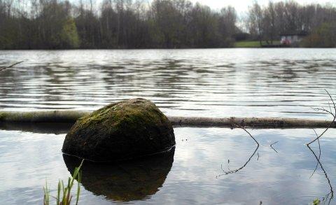 Blick auf einen Teich in der Grünanlage Arst Süd West in Bremen