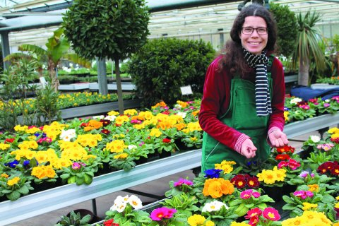 Eine Frau steht in einer grünen Schürze in einem Gewächshaus. Um sie herum sind bunte Pflanzen.