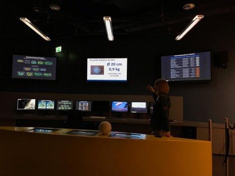 Eine Frau steht vor einem Modell eines großen Hagelkorns und mehreren Monitoren