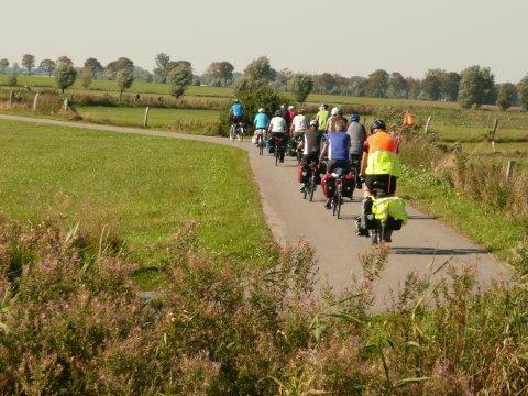 Eine Gruppe fährt Fahrrad im Grünen.