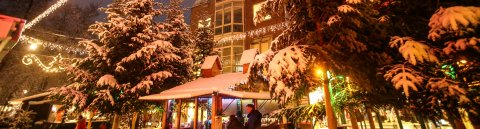 Tannenbäume mit Schnee bedeckt auf dem Vegesacker Winterspaß.