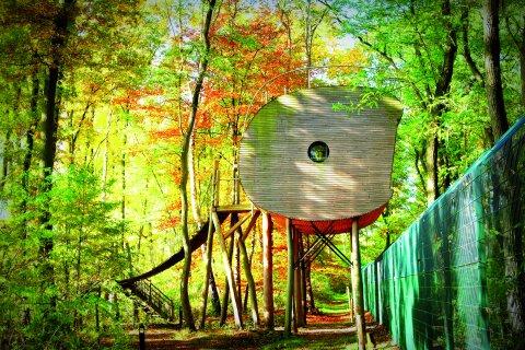 Baumhaus im Wald.