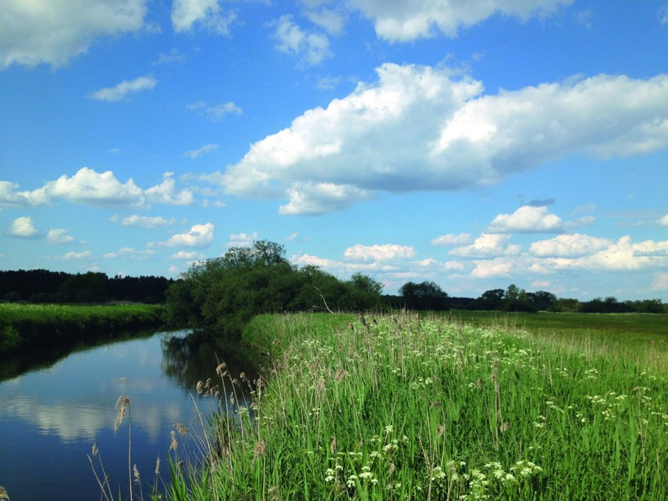 Deichlandschaft mit Graben, Wiesen und blauem Himmel