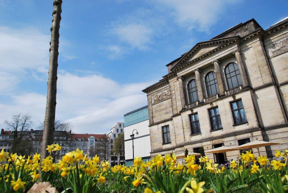 Narzissen vor der Stadtbibliothek