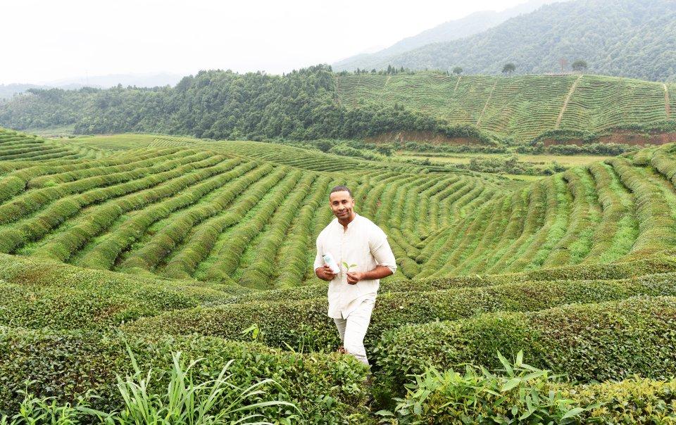 Der Gründer von my My Cup Of Tea steht in einer fernöstlichen Teeplantage.