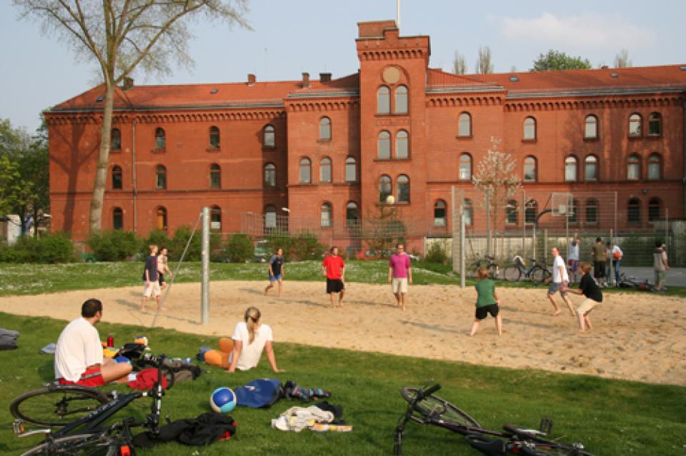 Beachvolleyballer auf einem Spielfeld in den Neustadtswallanlagen.
