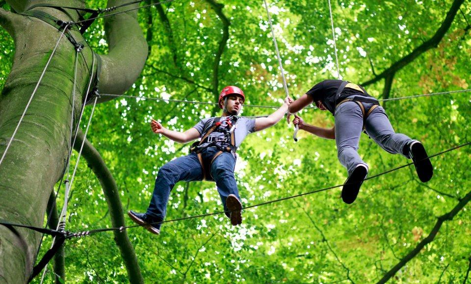 Gut gesicherte Besucher des Hochseilgartens hangeln sich auf Drahtseilen zwischen Bäumen entlang.