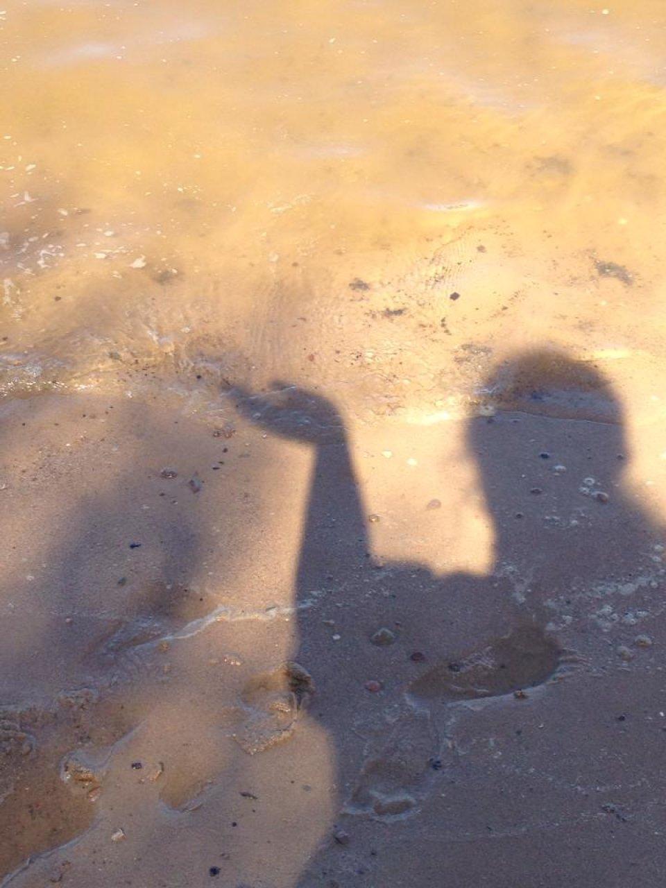 Schatten im flachen Wasser