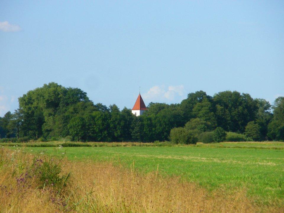 Blick über ein Wiese auf einen kleinen Forst mit Kirchturm in der Mitte