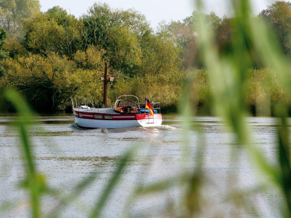 Blick durch Gräser an einem Fluss auf ein kleines Schiff